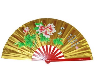 Aptidão tai chi fã artes marciais kung fu taichi taiji desempenho dois dragões