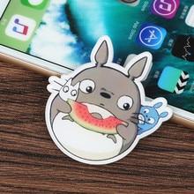 Japan Anime Brooch Cloth Badge Pins Tonari no Totoro Icon