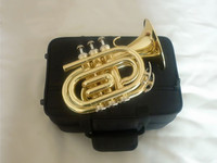 The Inventory Bb Pocket Trumpet Cornet Appearance Golden Plated TR 400 Bb Trumpete Professional Trompeta