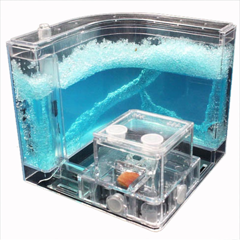 Acrylic Ants Farm Ants House Castle Colorful Insects Terrarium Ant Cage Insects Box Nursery Ecological Kid Educational Model Toy12