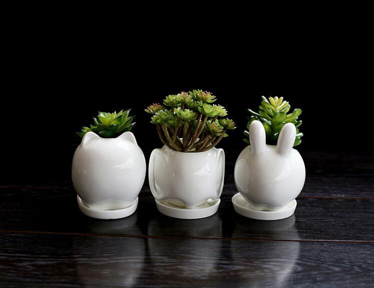 dish flower pot planters white elephant ceramic garden pots flower