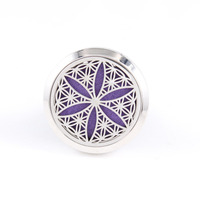 30mm Silver Screw 316 Stainless Steel Car Diffuser Locket Essential Oil Car Diffuser Locket Free Pads