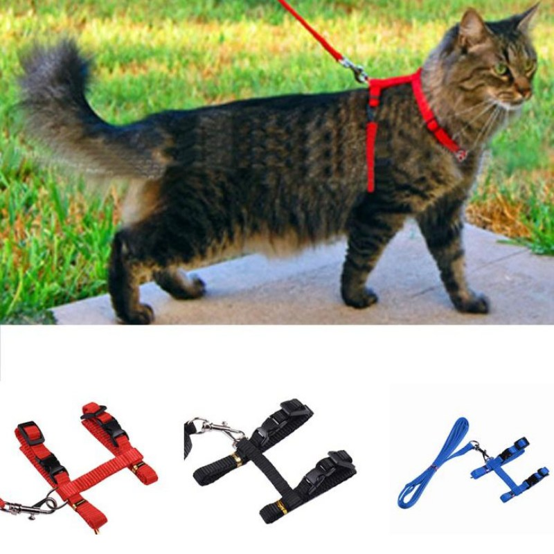 Adjustable Pet Traction Rope Dog Cat Walk Out Nylon Harness Collar Lead Leash Traction Small & Large Dogs Safety Rope Z thumbnail
