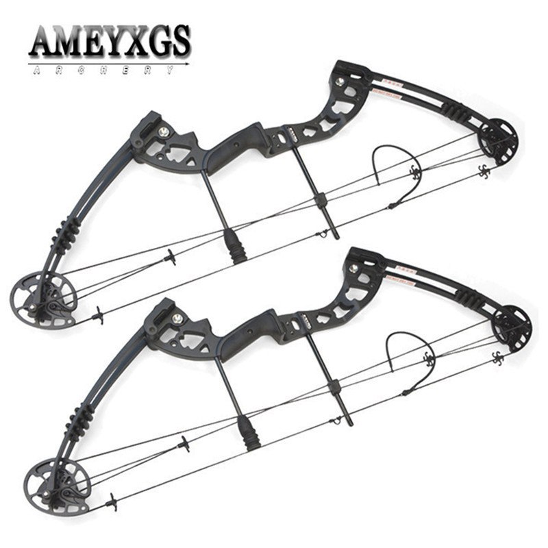 1set 38inch Compound Bow 30-55lbs Metal Alloy Hunting Bow IBO 310FPS Pulley Bow For Outdoor Sports Shooting Arcehry Accessories