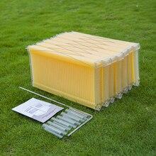 7 шт./упак. автоматический Мёд пчелиный улей лангстрот Пластик Мёд расчески улей кадров для Инструменты для пчеловодства пчелиный улей сад Авто пчелы гнездо