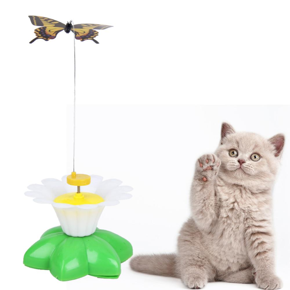 cat toy electric