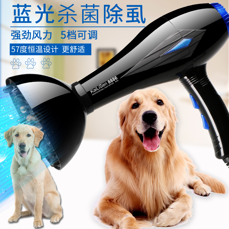 Pet Store Professional Electric Pet dog cat Hairdryer Blower Machine High Power Mute Dog Hair Dryer Golden Hair Teddy Heater dryer pet dog professional hair dryer ultra quiet high power stepless regulation of the speed drying machine 2400 w