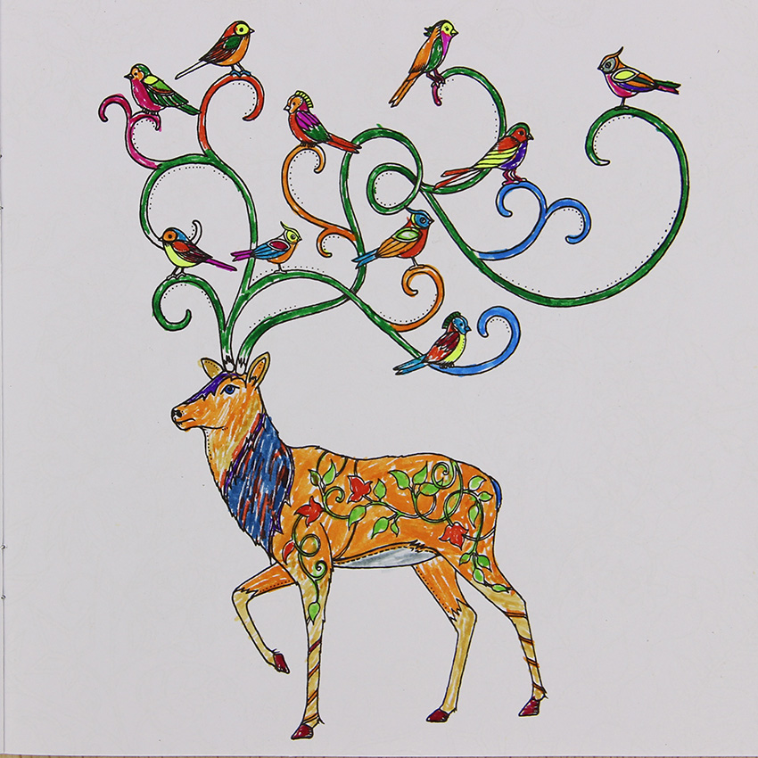 ③Una mano painted explore Wonderland libro para colorear 24 páginas ...