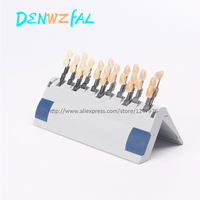 new Dental material vita tooth 26 color model
