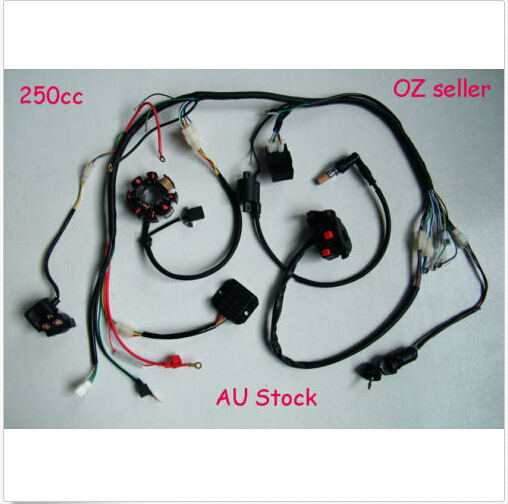 Complete electric wire harness magneto coil cdi for 200cc 250cc atv complete electric wire harness magneto coil cdi for 200cc 250cc atv quad lifan in motorcycle switches from automobiles motorcycles on aliexpress asfbconference2016 Image collections