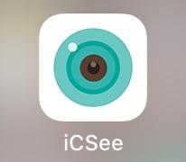 icsee