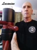 Master Recommend Movement Triangle frame Wing Chun Wooden dummy, Donnie Ye Used Standard Kung fu Wooden Dummy Martial arts