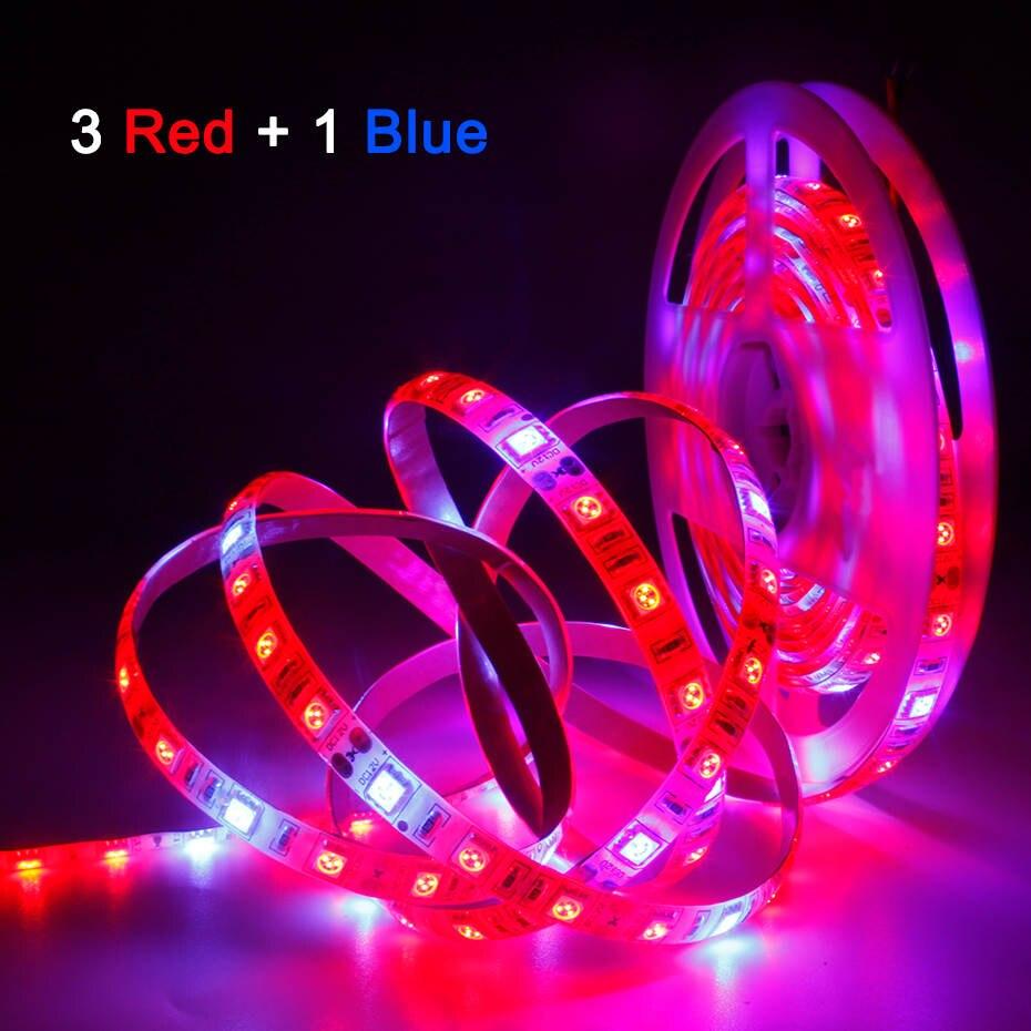 植物成長ライト 1 メートル 2 メートル 3 メートル 4 メートル 5 メートル防水フルスペクトル LED ストリップ花フィトランプ赤、青 4:1 温室効果水耕用