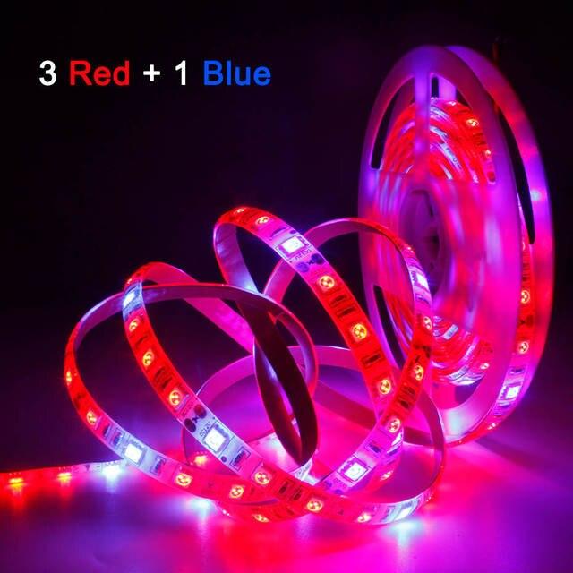 Pianta coltiva le luci 1m 2m 3m 4m 5m impermeabile spettro completo LED striscia fito lampada fiore rosso blu 4:1 per serra idroponica
