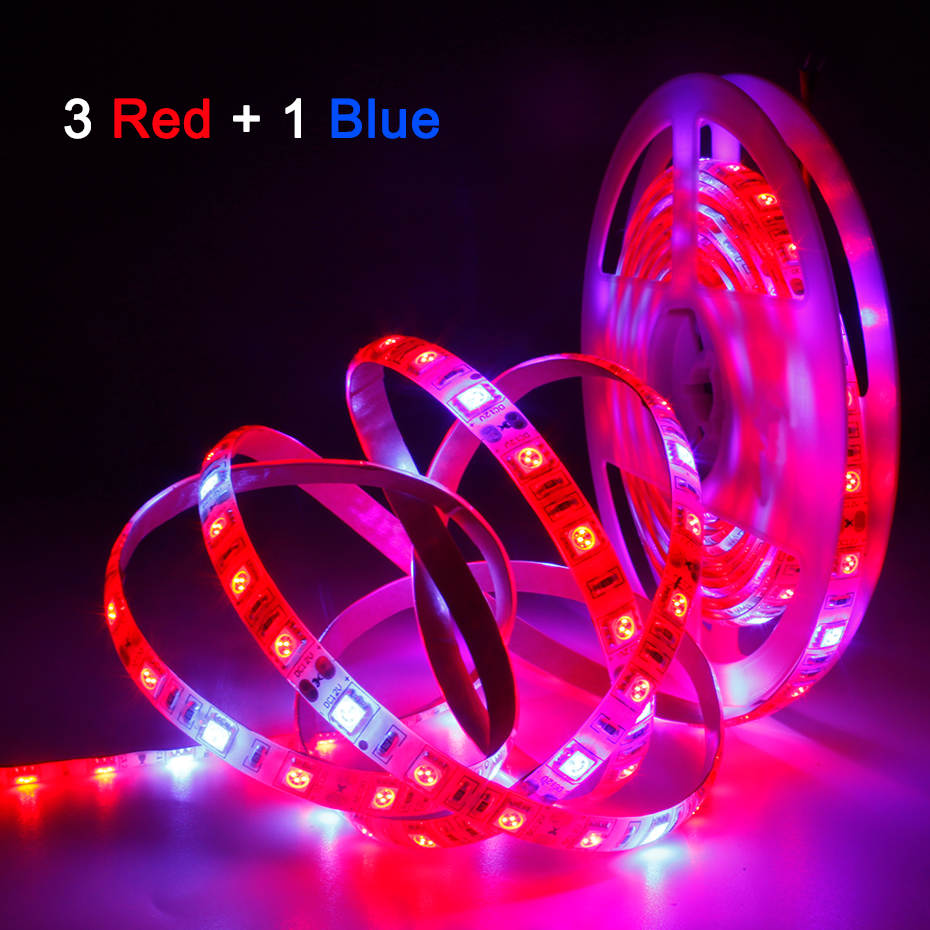 Plant Grow lights 1m 2m 3m 4m 5m Waterproof Full Spectrum LED Strip Flower phyto lamp Red blue 4:1 for Greenhouse Hydroponic