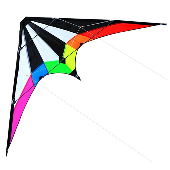 Free Shipping Outdoor Fun Sports NEW 1.8M Dual Line Stunt Kites / Lightning Kite with Handle And Line Good Flying