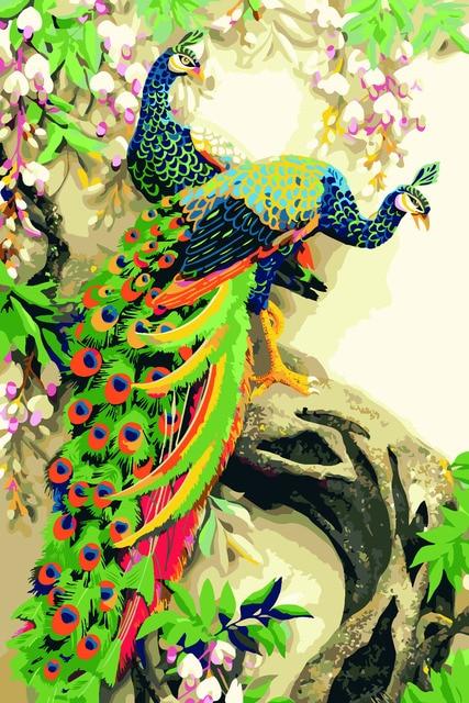 Hq Colorful Burung Merak Hewan Lukisan Dengan Angka Diy Minyak Pada