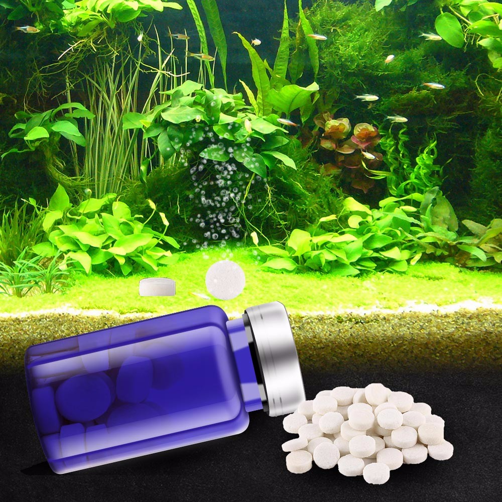 US $3 99 20% OFF|Aliexpress com : Buy 60 PCS CO2 For Aquarium Carbon  Dioxide Tablet CO2 For The Aquarium Plants Fish Tank CO2 Diffuser Aquarium