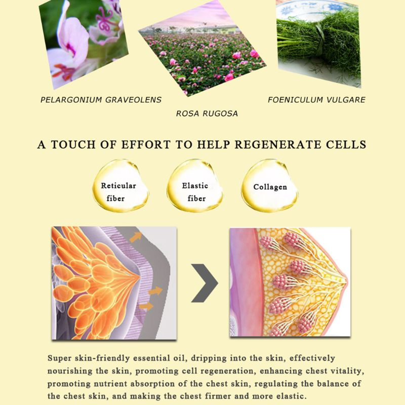 10ml Natural Plant Rose Essence Breast Enhancer Massage Essential Oil Grow  Size Up Busty Enlargement Treatment Lifting Skin Care-in Essential Oil from  ...