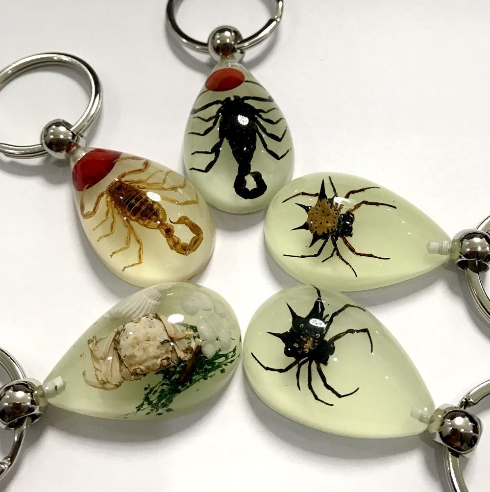12 PCS Beetle Black Scorpion Spider Insect Glow In Dark Key Chain Keyring