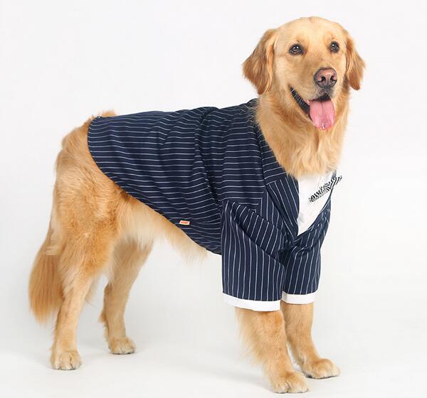 Wspaniały 2016 nowy projekt duży pies fajne mody pasek bowknot garnitur TG88