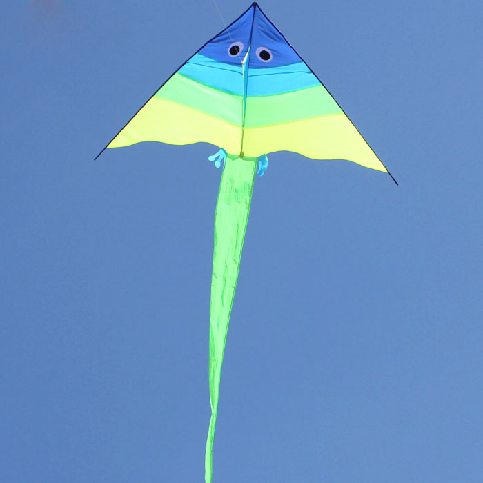 Free Shipping Outdoor Fun Sports NEW Cute Triangle Fish Kite With Handle & Line