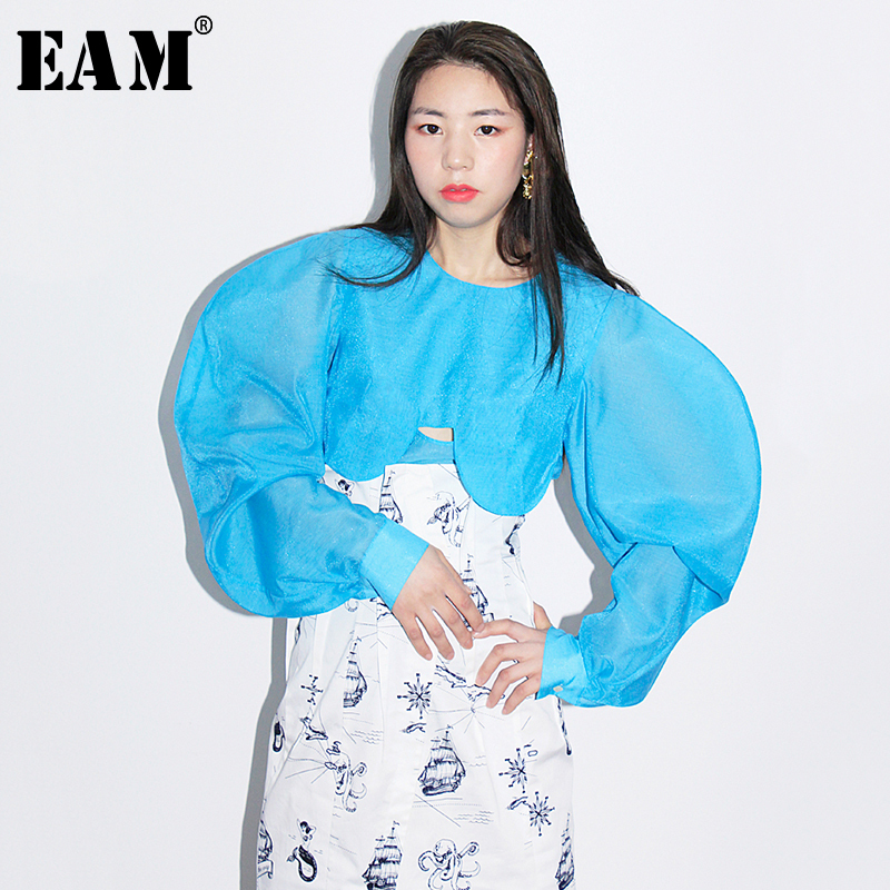 [EAM] 2019 New Autumn Winter Round Neck Long Sleeve Three-dimensional Perspcective Loose Shirt Women Blouse Fashion Tide JR257