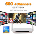 Android Iptv Set Top Box Q9 Reproductor Multimedia DDR3 1G/8G Wifi IPTV Canales de Túnez Europa Árabe Francés Africano Cine/TV Drama caja