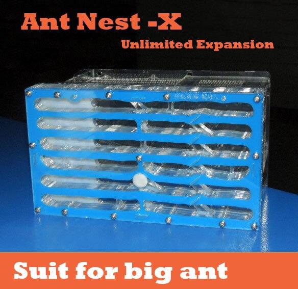 19,6*11,2*3 cm granjas de hormiga, sección de expansión de nido de hormiga X villa de insectos de acrilo manía avanzada de Mascota para las hormigas de la casa