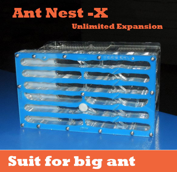 19.6*11.2*3cm ant farms,ant nests expansion section X acryl insect villa  pet advanced  mania for house ants