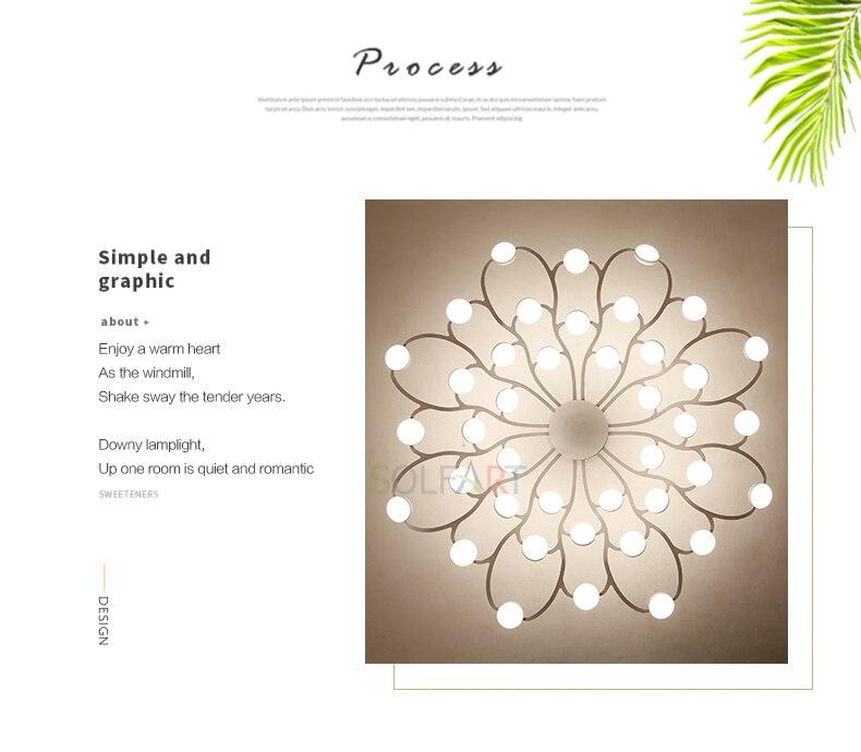 8047-LED Ceiling Light Sconce Luminaria Chandelier Ceiling Avize Light Fixtures Ceiling Lamp_02