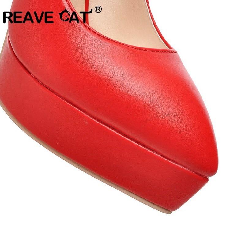 A294 Dames forme Bout Causalité Reave Sur black Vente Botas blue Plate De Plus Talons pink Boucle Pompes Mujer Taille Chaussures red Chat 33 Beige La Pointu Femme Hauts 43 AqgrXPqw