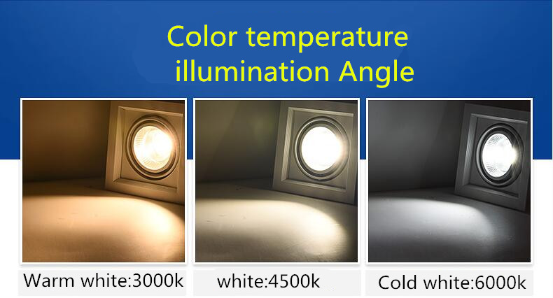 1Pcs 10W 20W 30W 110V 220V LED DIMMABLE Առաստաղի ներքևի - Ներքին լուսավորություն - Լուսանկար 6