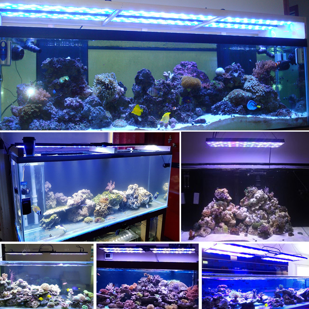 PopBloom marine aquarium light for aquarium led fish tanks lamp for fishing led light coral reef acuario lamp sunrise sunset