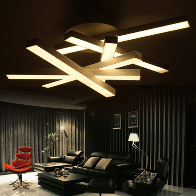 Creative Contemporary LED Ceiling Lamp Acrylic Lamp Shade Irregular Figure Sh
