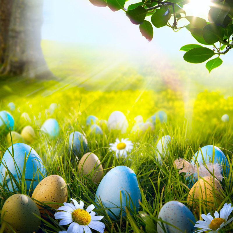 HUAYI 8x8ft easter backdrop vinyl photography backdrops easter eggs spring scenery photo props wedding background XT-5490