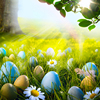 HUAYI 8x8ft Easter Backdrop Vinyl Photography Backdrops Easter Eggs Spring Scenery Photo Props Wedding Background XT