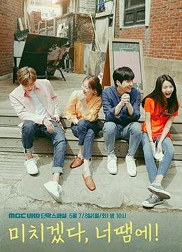 《疯了,因为你!》2018年韩国喜剧,爱情电视剧在线观看