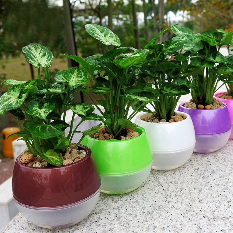 Mkono 3 5pcs Self Watering Pot Automatic Planter Plant
