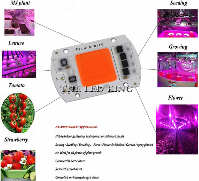 Led Grow Light Chip 20W 30W 50W 60W 80W 230V Full Spectrum 380nm~780nm Best for Hydroponics Greenhouse Grow DIY for LED Lamp