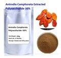 Envío libre Camphorata Antrodia extracto Polisacárido 30% mushroom extract powder 200g