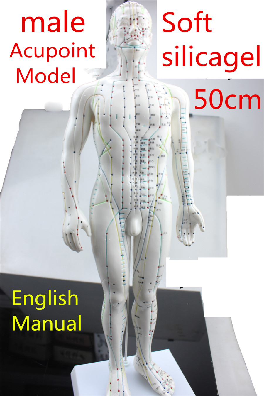 HD Soft silicagel Acupuncture Model 50cm male with Base Human acupuncture meridians model Acupoint Model Acupuncture massage