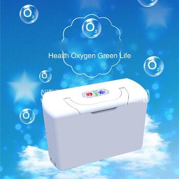 Twee batterijen Echt Draagbare Zuurstofconcentrator home reizen met auto oplader AC100V-240V/DC12V-16.8V zuurstof generator