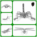 JWLELE Insect series Puzzle 3D Metal assembly model Souptoys Creative Desktop decoration DIY Alloy material Classic collection