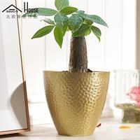 Nordic Simple Metal Flower Pot Hydroponics Plants Thickened Fleshy And Creative Interior Scene Model Room Decoration
