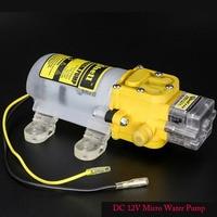 Priming Diaphragm Mini Pump Spray Motor 12V Micro Pumps For Agricultural Car Washing Medicine Water Dispenser Max Suction 1.2m