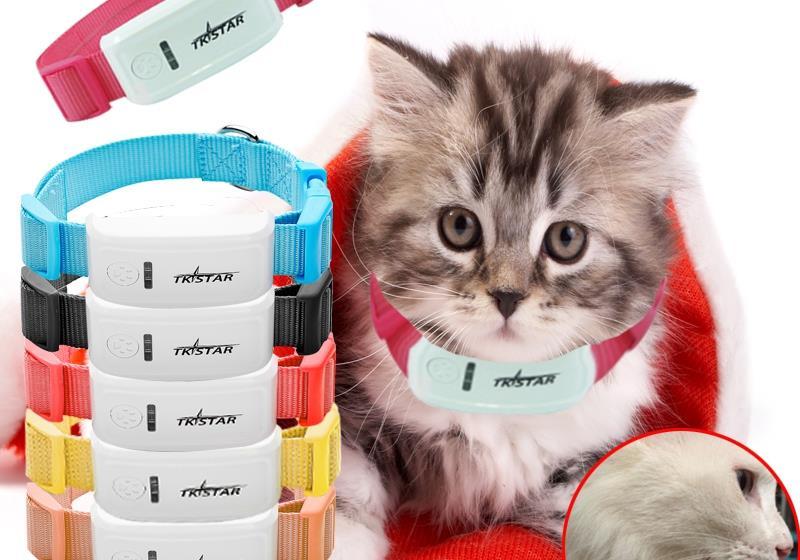 achetez en gros collier pour chat tracker en ligne des. Black Bedroom Furniture Sets. Home Design Ideas