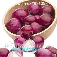 Свежий Гигантский фиолетовый Лук семена овощных культур 95% Высокого прорастание овощей для дома сад Бесплатная Доставка