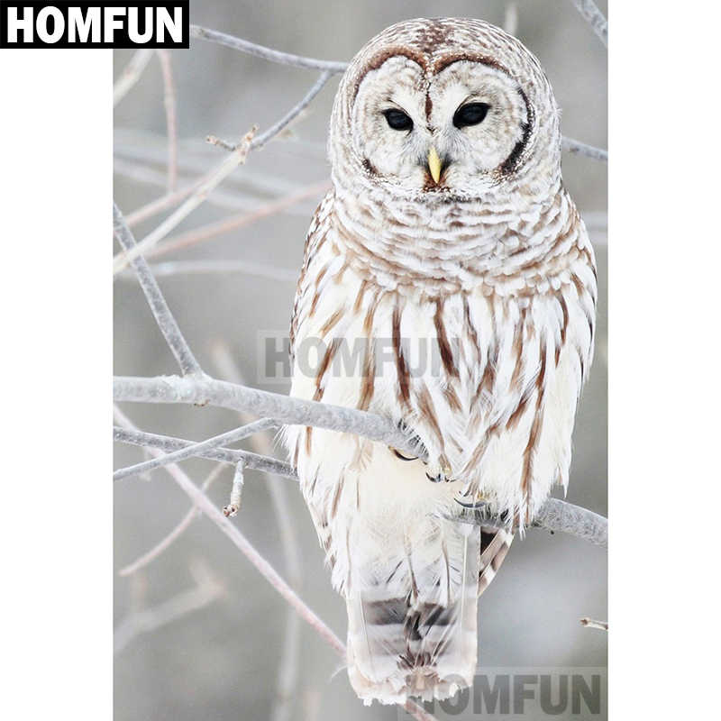 A01917       Animal owl