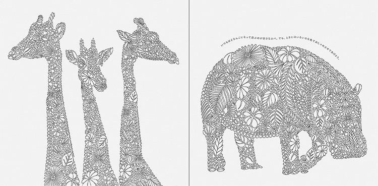Malbuch Packpacka Secret Garden Iii Animal Kingdom An Treasure